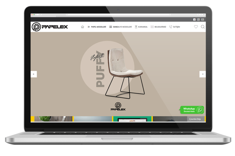 Papelex Web Sitesi